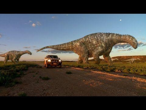 356 best Wild Life & Animals Documentary images on Pinterest | Wild life, Documentary and Animals