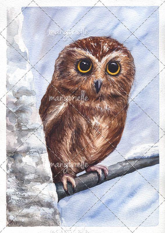 Owl - Original Watercolor by Magnifera on Etsy
