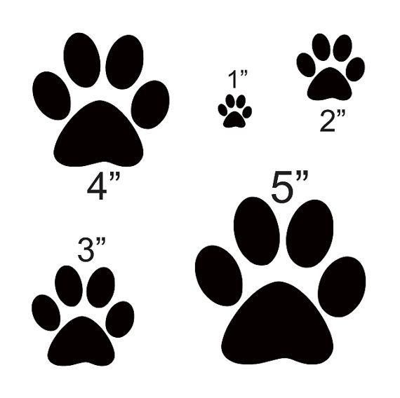 "Dog Paw STENCIL with 5 total Sizes 1"", 2"", 3"","