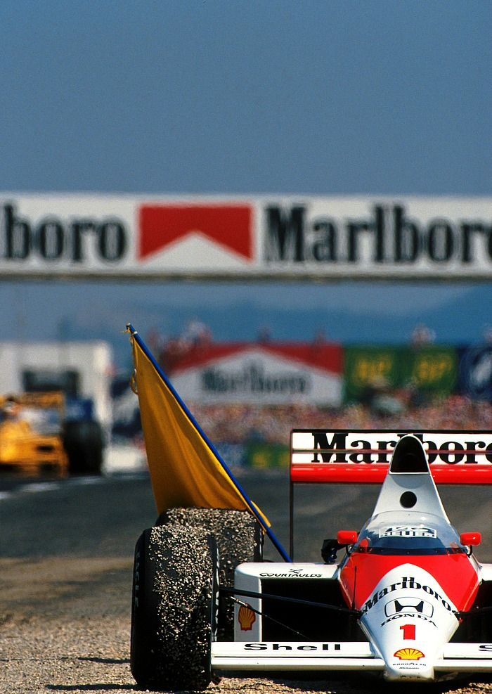 """We don't need myths. We need examples to be followed. Examples of courage, determination, hope. We need to believe it is possible to win. And it is our duty to pursue it"" Ayrton Senna"