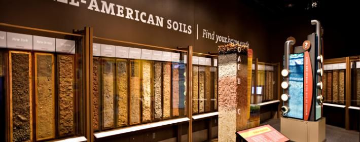 Dig It-The CA Museum-Soil Monolith