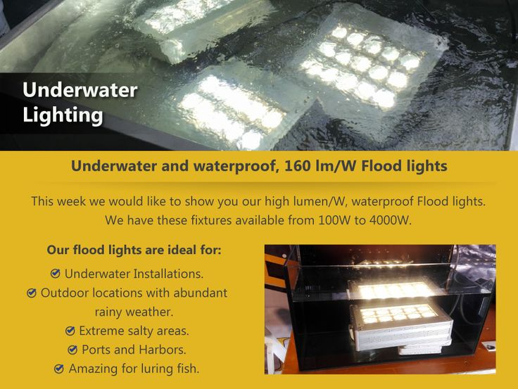 Waterproof Flood lights The right product for your seaside projects, as they are able to withstand water and salt. With our most recent WFC technology, they are also vibration proof, and excellent for Port crane applications. http://www.ledsuniverse.com/en/flood-lights/ #WaterProofLights #LED #LedLights #FloodLights #LightingProject
