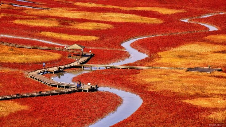 salt pond by Tiger Seo