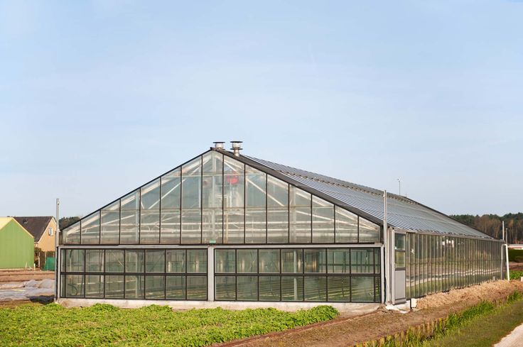 Become a Millionaire on One Acre with Aquaponics