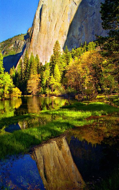 El Capitan Reflection, Yosemite National Park, California, USA