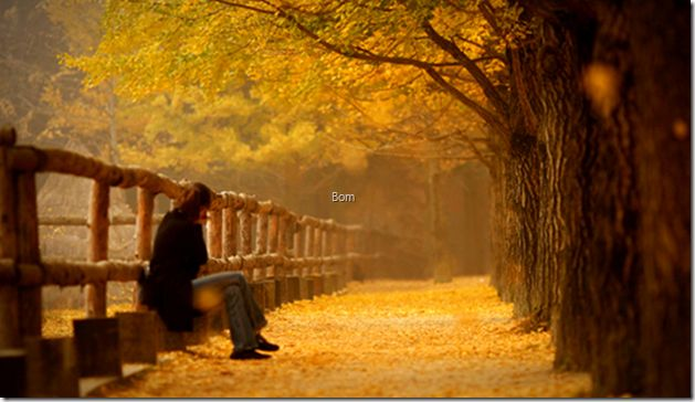 가을 가을 가을 가을 가을 가을 가을