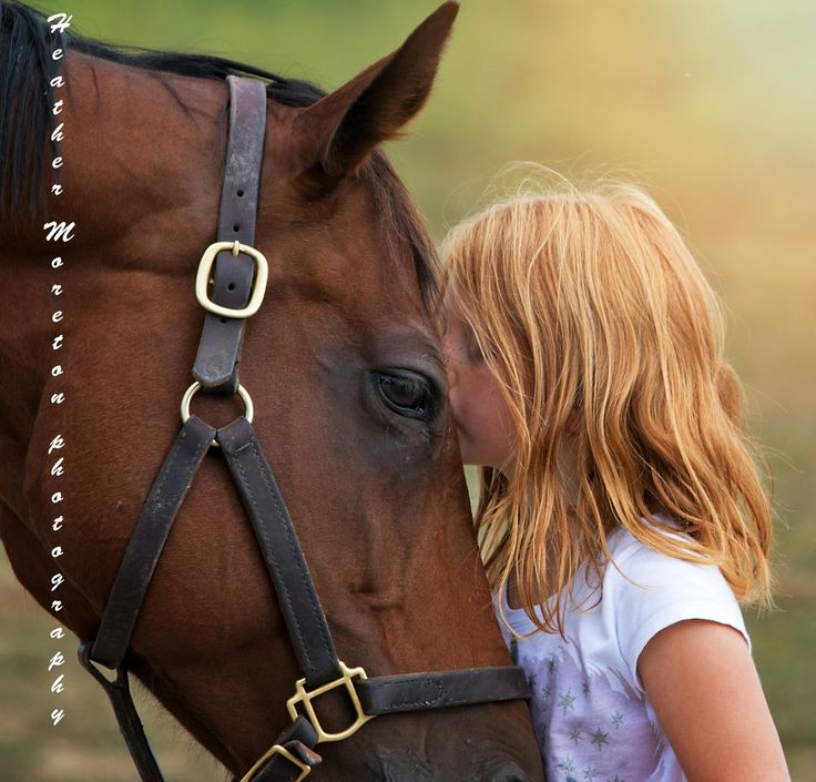 Jo Jo's Gypsy, a 10-year-old mare weighing 758 pounds when she was rescued last year, has blossomed under the care of Jeanne Mirabito and her granddaughter Kaylee, 7. © Photos by Heather Moreton