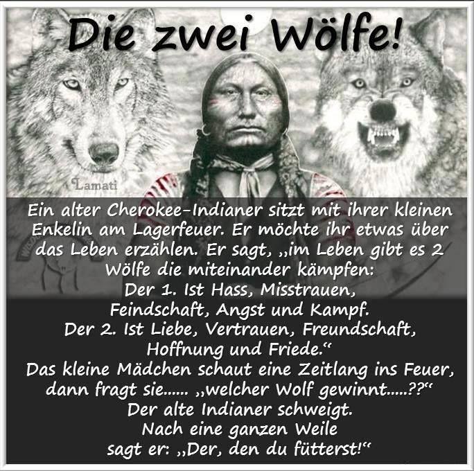 Die zwei Wölfe -Two wolves