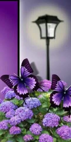 ...sometimes I whish, I was a butterfly... (but an purple one only)...