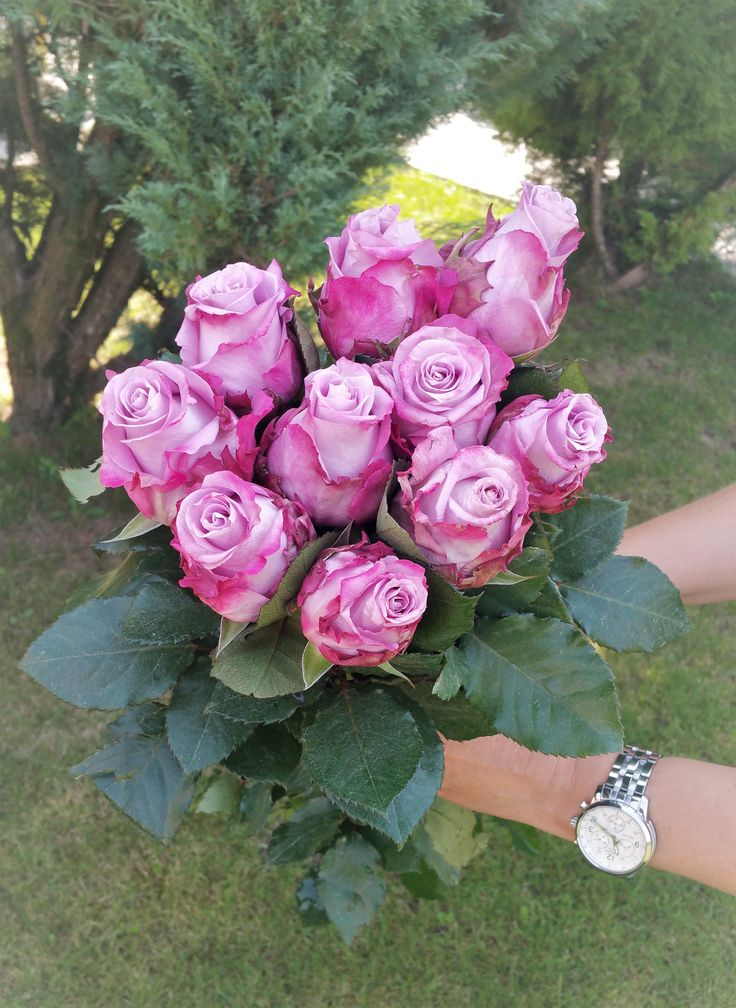 Roses - Deep purple #flowersdelivery #bouquet #roses #kvetyexpres #Slovakia