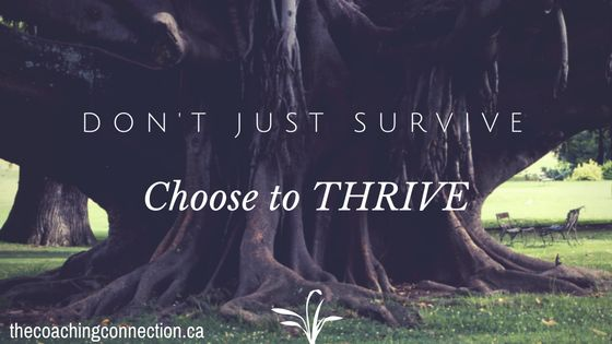 choose-to-thrive-1