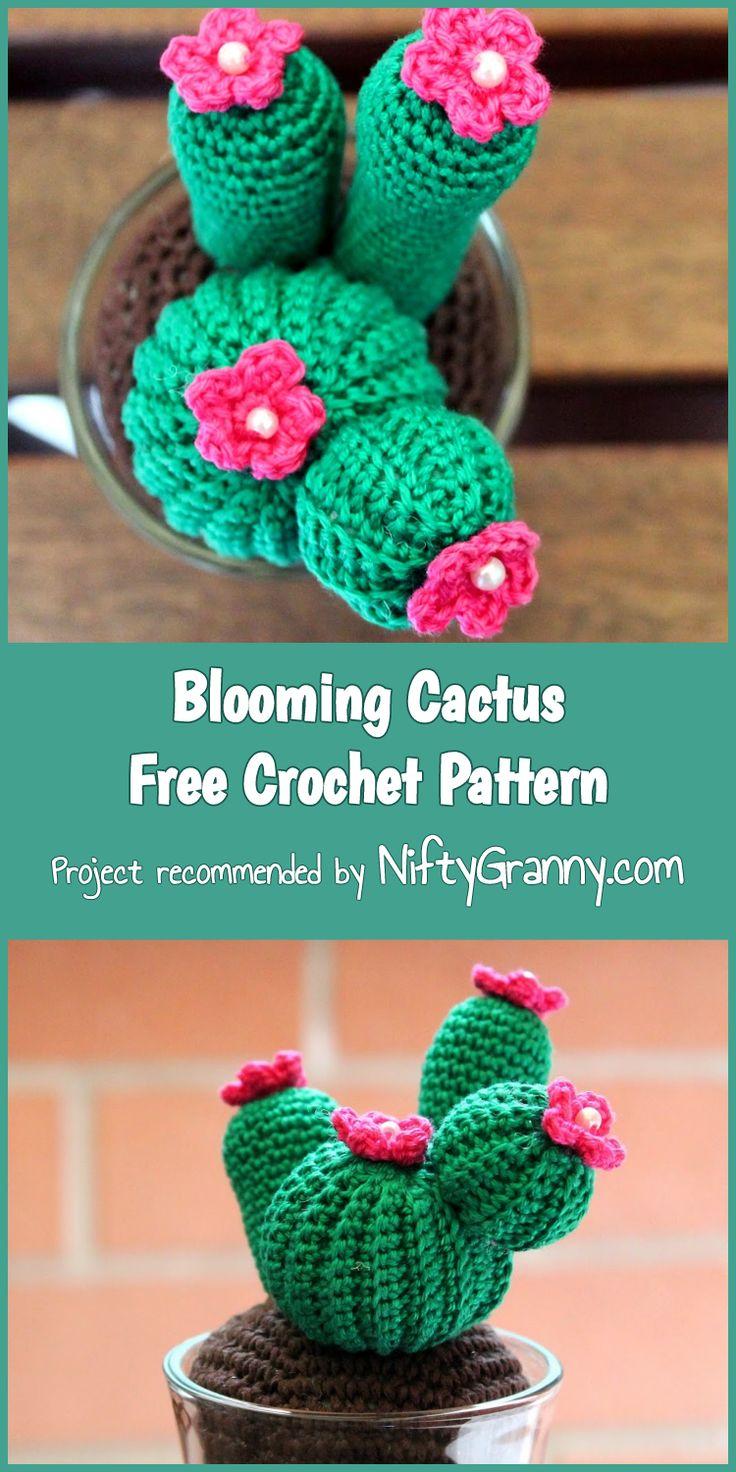 Blooming Cactus Free Crochet Pattern #cactus #crochet #amigurumi