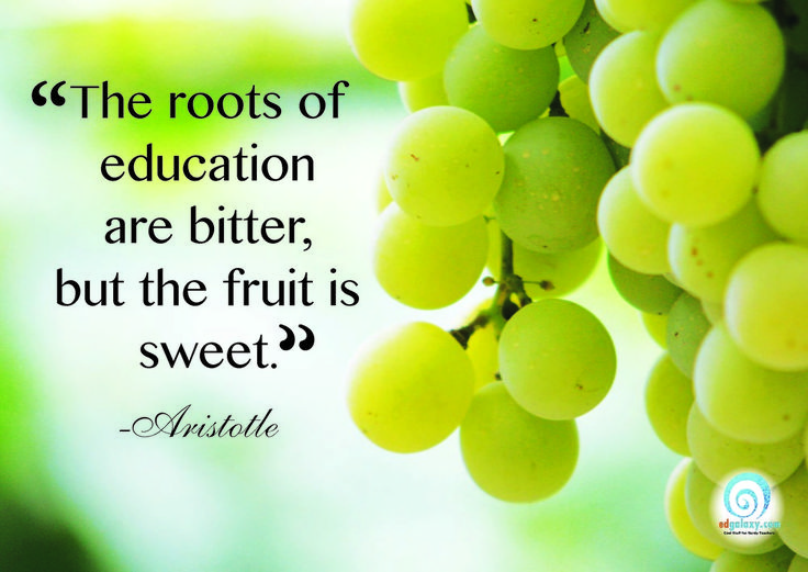 The roots of education are bitter, but the fruit is sweet. -Aristotle