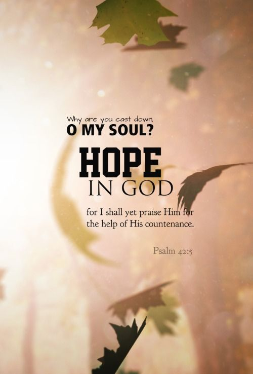 The Christian's hope is in the Lord, We rest secure in His sure Word; And though we're tempted to despair, We do not doubt that God is there. - D. DehaanNo one is hopeless whose hope is in GOD.