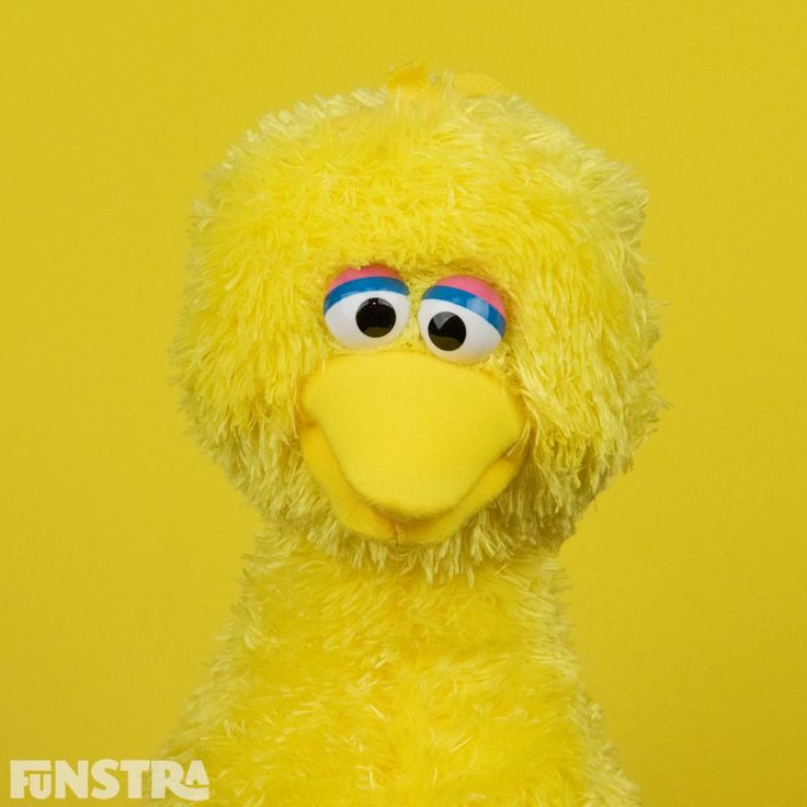 Big Bird and more Sesame Street toys at Funstra