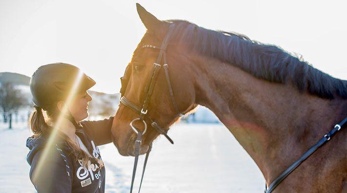Forskning bekräftar att hästar är friskvård