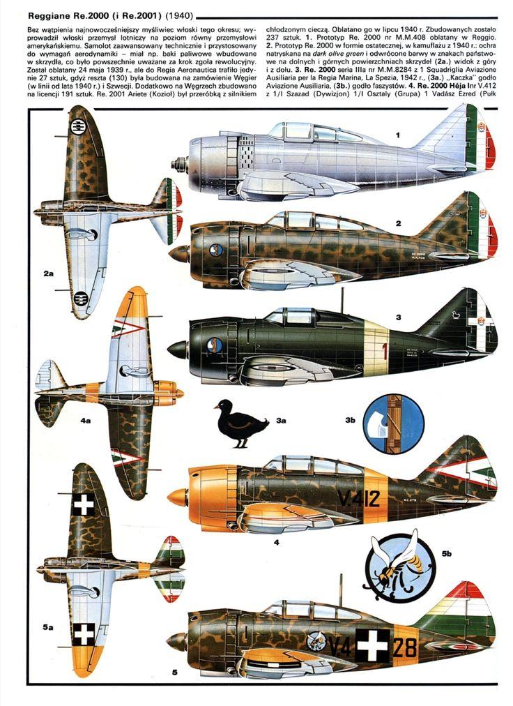 Reggiane Re 2000 e Reggiane Re 2001 - Regia Areonautica