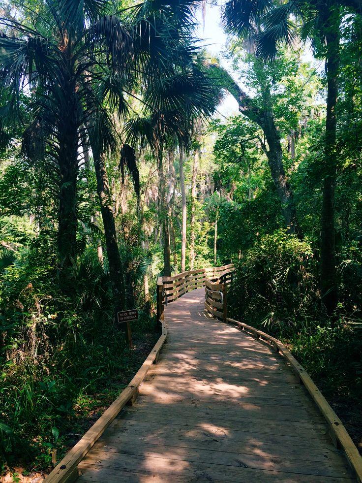 Boardwalk at Blue Spring State Park. Orange City, Florida