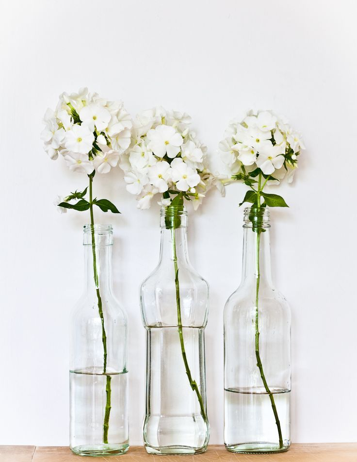 Fresh flowers in recycled glass bottles flowers plants for Flowers in glass bottles
