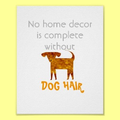 I like this quote because I must have the best decorated place ever! Because even after you clean 17,000 times there is still dog hair everywhere!