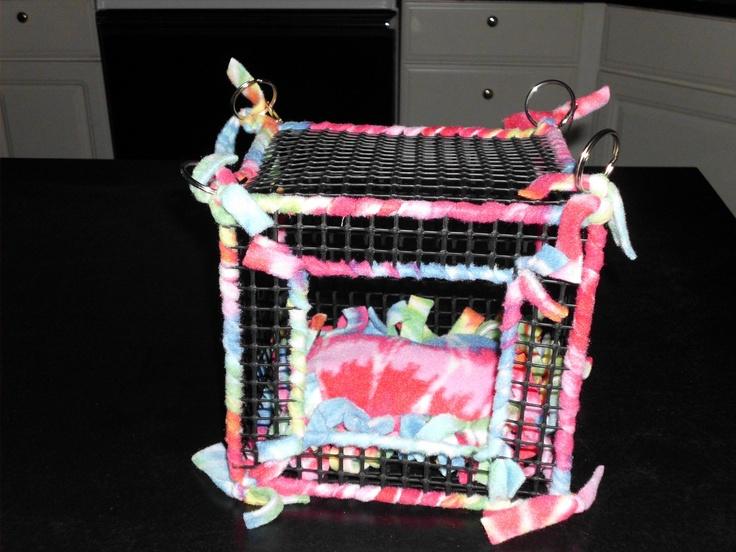 17 Best images about My baby sugar glider on Pinterest  Sugar glider ...