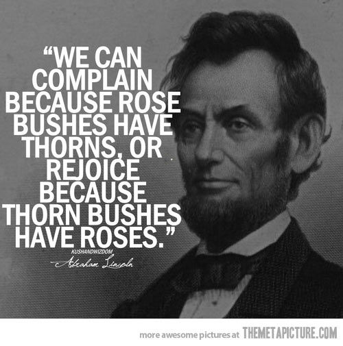 """""""We can complain because rose bushes have thorns, of rejoice because thorn bushes have roses."""" - Abraham Lincoln"""
