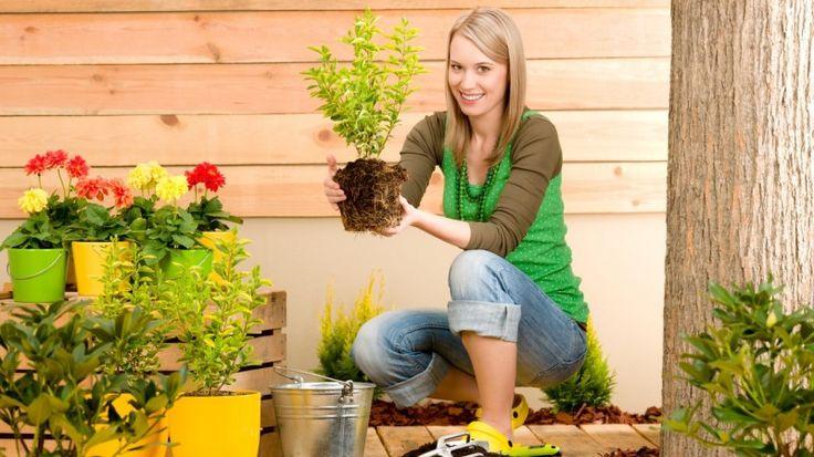 Уход за кожей рук после работы в саду — Модно / Nemodno