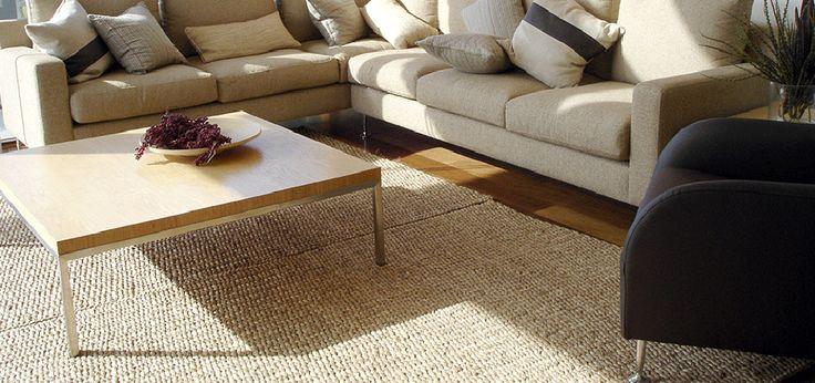Carpet Cleaning, Carpet Restoration, Fresh Carpet - Gainesville, FL