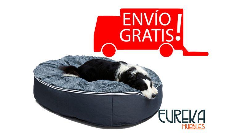 Festeja todo el mes de #Julio a tu compañero #ElPerro con un #PetPuff para ellos http://www.eurekamuebles.com.mx/sofa-camas/puffs/pet-puff-cama-para-perro.html con Envío #Gratis