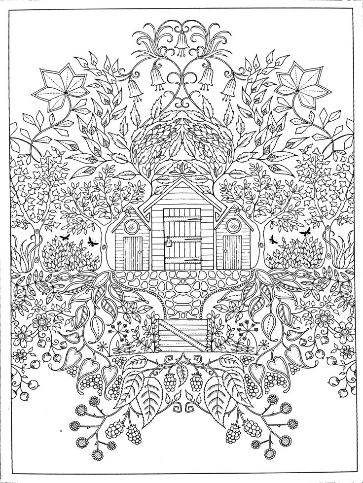 1000 Images About Colouring In Pages On Pinterest