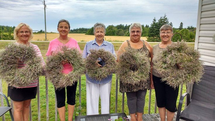 wreath made with straw circle form and wreath made with beach heather. Aug 2016