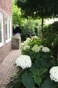 Jaren30woningen.nl | Inspiratie voor de (zij) tuin van een #jaren30 woning
