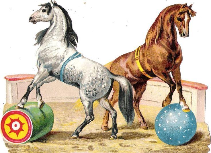 Oblaten Glanzbild scrap die cut chromo Zirkus  15,5 cm cirque circus Pferd horse