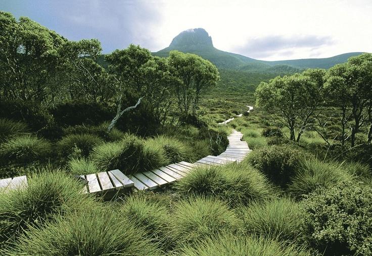 Explore Tasmania by foot.