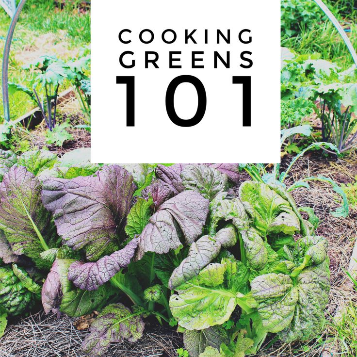 cooking greens 101