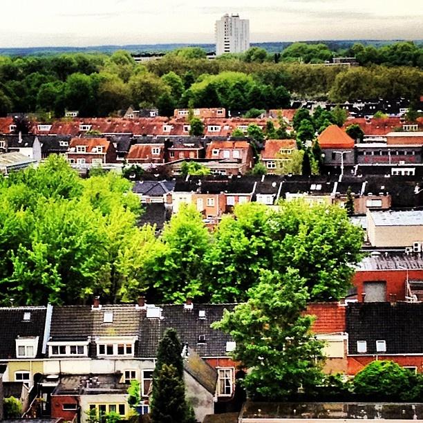 #Tilburg centrum #hoogvenne mooi groen via @janvaneijndhoven- #Instagram #MooiTilburg