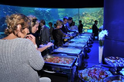 dinner @ Turkuazoo Aquarium