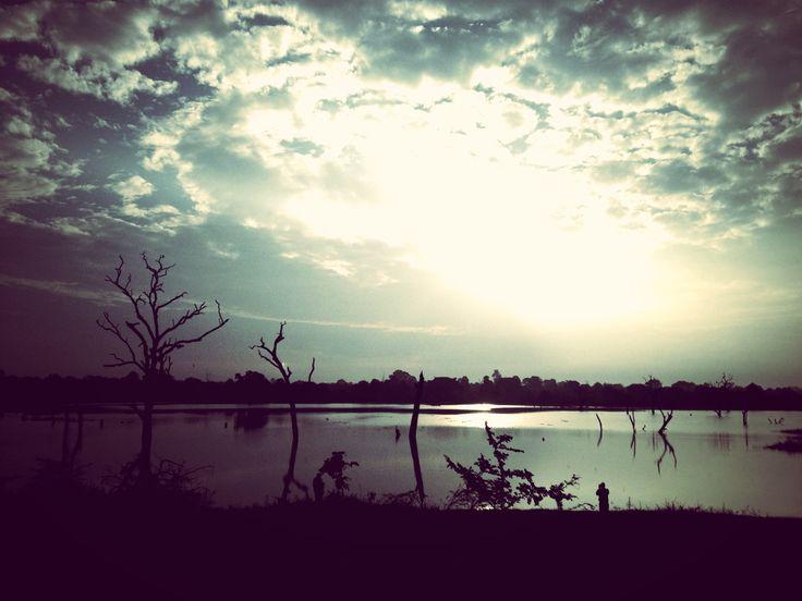 my homeland #srilanka #edited #myphotography