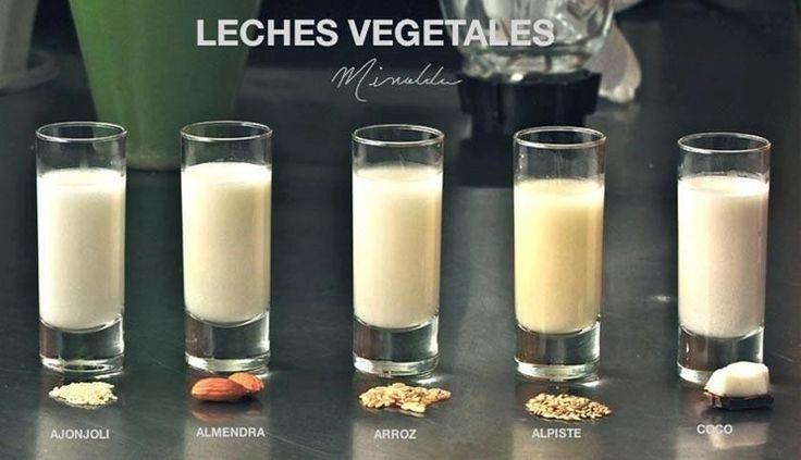 Recetas de 7 leches vegetales: FACILISIMO