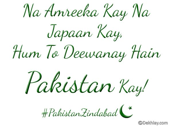 Free Pakistan Independence Day 14 august Display Pictures, Avatars, twitter, facebook, whatsapp (8)