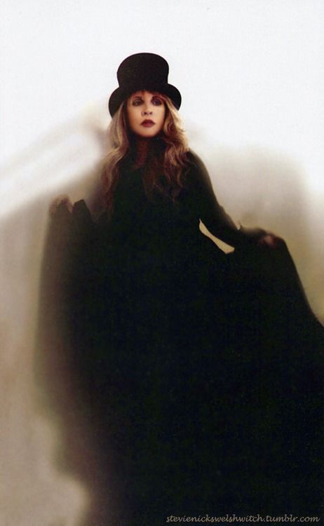 Stevie Nicks is a dreamer and a lover and a singer and a writer... What more do you need..?..