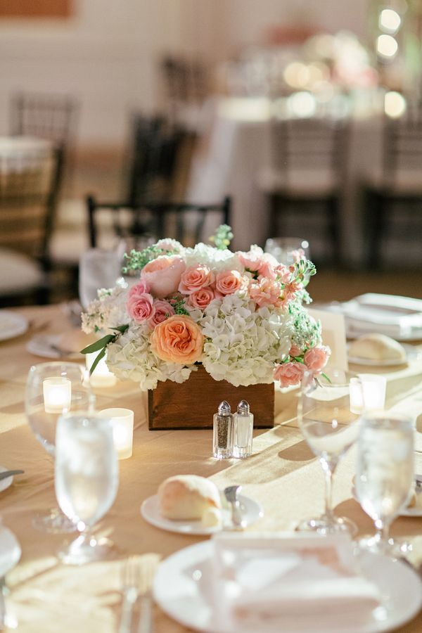 Roses and hydrangeas in a planter box | Photo by Brooke Images