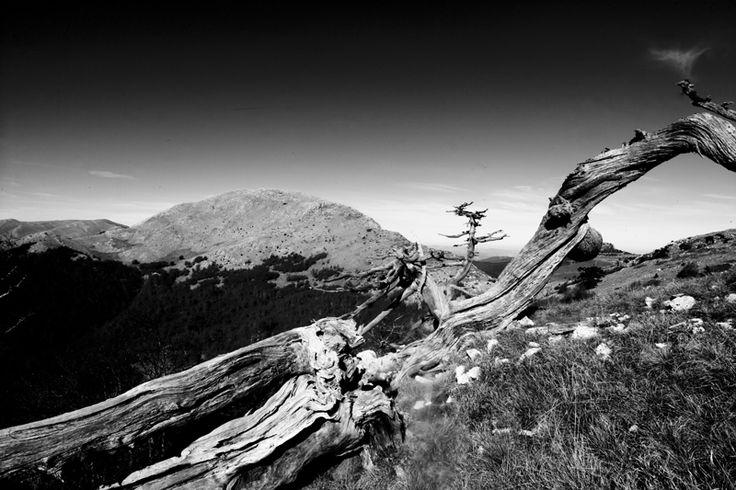 Paesaggi di montagna di Gilberto Peroni