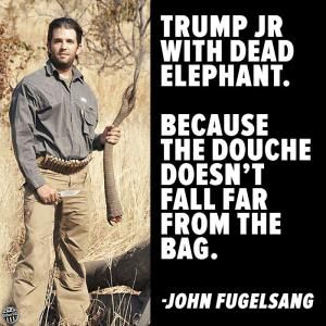 Humorous quotes, jokes and tweets skewering Donald Trump from Louis CK, Andy Borowitz, Bill Maher, Stephen King, and others.: John Fugelsang on Trump Jr.