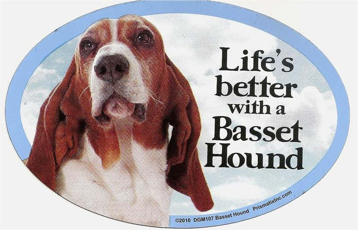 Life's better with a Basset Hound: Bassets Galore, Beloved Bassett, Someday Dog, Bassets Lovable Rogues