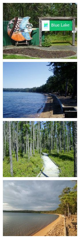 Blue Lake Provincial Park has an awesome dog play area and is an amazing park to enjoy for a week or long weekend! Find out more at https://www.ontarioparks.com/park/bluelake  #southcoastvibe #camping #dogs #outdoors #dogfriendly #bonecho #ontario #parks #provincialparks #active #living #livefree #beachlife