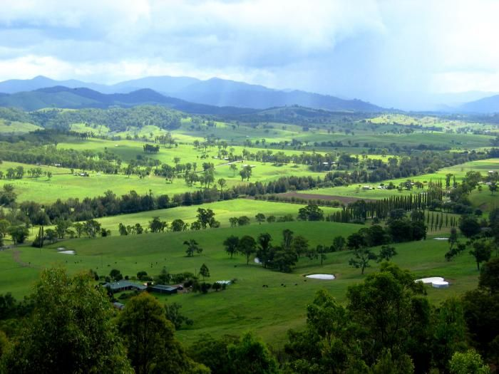Barrington River Valley - stay at https://www.facebook.com/pages/MANSFIELD-COTTAGE-BARRINGTON-Barrington-Tops-Holiday-Accommodation/341811962165 Ph 0265547780 M 0431734352 Email jill.perram@bigpond.com Barrington Tops Waterfalls kids family animals farm river holiday accommodation cottage farmhouse farmstay