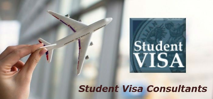 VISA is nothing but an endorsement by the embassy on the passport for a person to travel to other