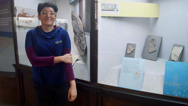 Investigadores del Conicet hallaron fósiles de un pez de más de 240 millones de años   Un equipo de investigadores del Instituto Argentino de Nivología Glaciología y Ciencias Ambientales (IANIGLA Conicet  Universidad Nacional de Cuyo) y el Museo Argentino de Ciencias Naturales Bernardino Rivadavia halló en la provincia de Mendoza fósiles de un pez de más de 240 millones de años perteneciente al grupo de los Redfieldiiformes en el marco de un trabajo que se publicó en Papers in…