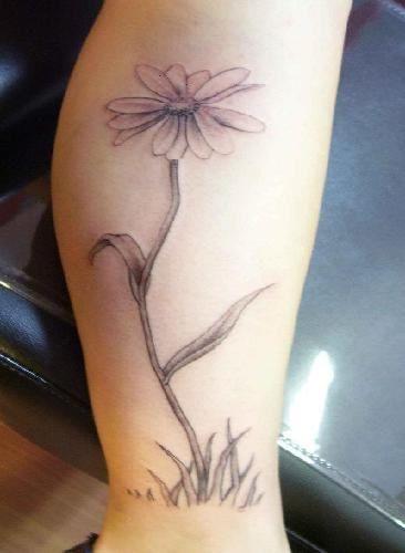 Celtic Daisy Tattoo: 47 Best Celtic Knots Images On Pinterest